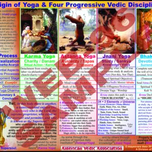 This chart illustrates what the 4 legitimate yoga systems that are presented in the Vedas.