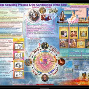 Knowledge Acquiring Process & Soul